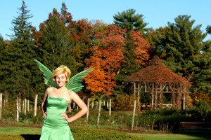 tink autumn web